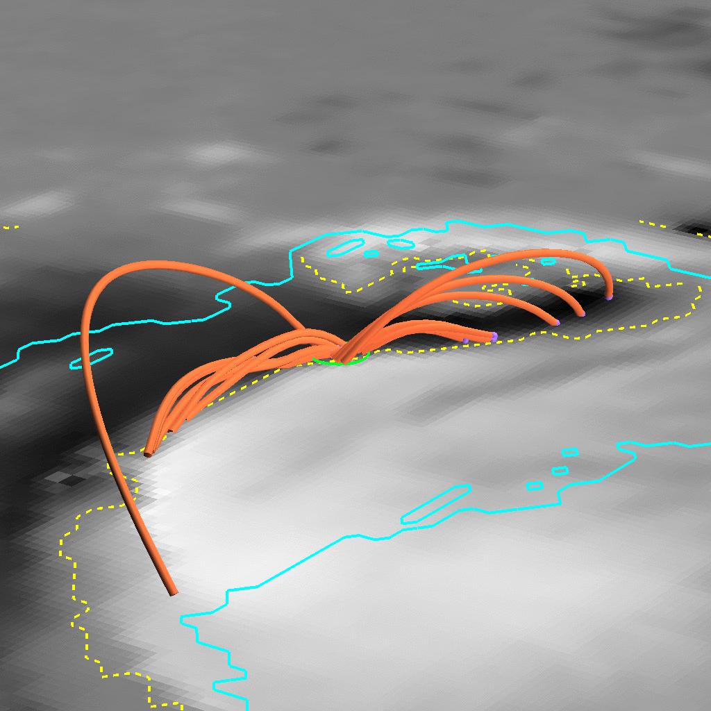 ①太陽磁場3次元画像.png