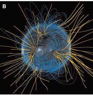 太陽コロナと磁力線の様子