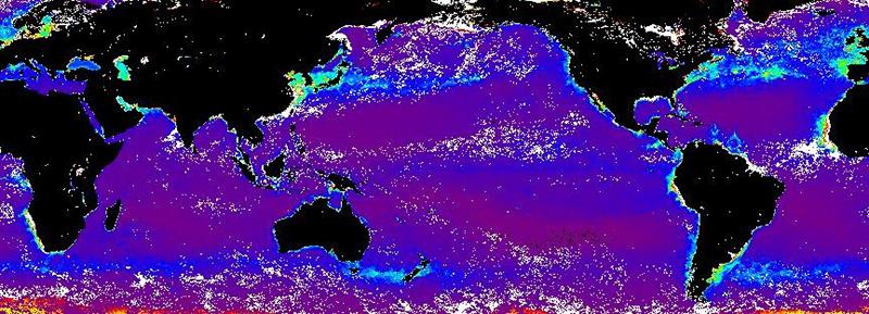 2009年4月の地球規模の海洋での一次生産の分布図
