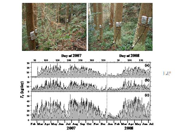 一本毎の木の水使用量を計測するセンサーと一日当たり水使用量計測結果